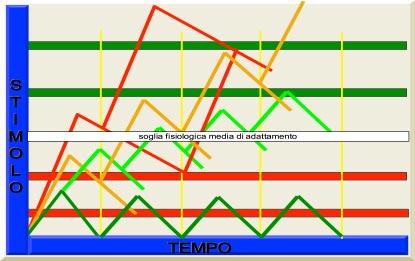 Questo schema mette in relazione lo stimolo (sia psichico che fisico) in funzione del tempo. Come esempio useremo tre colori per identificare tre tipologie diverse di persone: Persona con buon adattamento allo stress Persona con adattamento disfunzionale allo stress Persona con adattamento patologico allo stress Il livello di soglia di adattamento fisiologico medio è rappresentato in bianco, quelli di adattamento inferiori alla soglia in rosso e quelli superiori in verde.   Le linee gialle verticali  rappresentato gli stimoli (stressors)  che vengono conferiti a determinati intervalli di tempo.  E' facile immaginare la moltitudine di combinazioni che si possono verificare in relazione all'intensità dello stimolo, alla reazione individuale a questo, alla latenza di ritorno (quanto tempo passa prima che gli effetti dell'eccitamento del sistema nervoso ritornino alla norma), alla soglia di adattamento individuale, alla frequenza degli stimoli (stressors), al fattore di sommazione degli stimoli, ecc.. Il grafico verde rappresenta la percezione dello stimolo da parte di un soggetto con buon adattamento. Lo stimolo evoca una risposta lieve del sistema e si ha un ritorno alla norma prima che il sistema venga stimolato nuovamente. Uno stimolo anche lieve, però, può provocare una percezione soggettiva anomala se la soglia di adattamento e' molto bassa (prima linea orizzontale rossa).  Il grafico arancione rappresenta la percezione dello stimolo da parte di un paziente disfunzionale. Come si può notare lo stesso  stimolo ha provocato una risposta soggettiva molto più intensa, la latenza di ritorno è più lunga e quando il sistema riceve un secondo stimolo, questo viene sommato al primo, in quanto non si era raggiunta ancora la linea basale di attività. Continuando gli stimoli, questi comportano facilmente il superamento della soglia media ed eventualmente anche di soglie di adattamento più elevate (linee orizzontali in verde).  Il grafico rosso rappresenta la percezione dello 